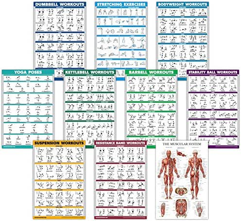 QuickFit 10 Pack - Exercise Workout Poster Set - Dumbbell, Suspension, Kettlebell, Resistance Bands, Stretching, Bodyweight, Barbell, Yoga Poses, Exercise Ball, Muscular System Chart - (18
