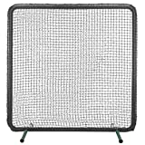 Atec Padded Baseball First Screen