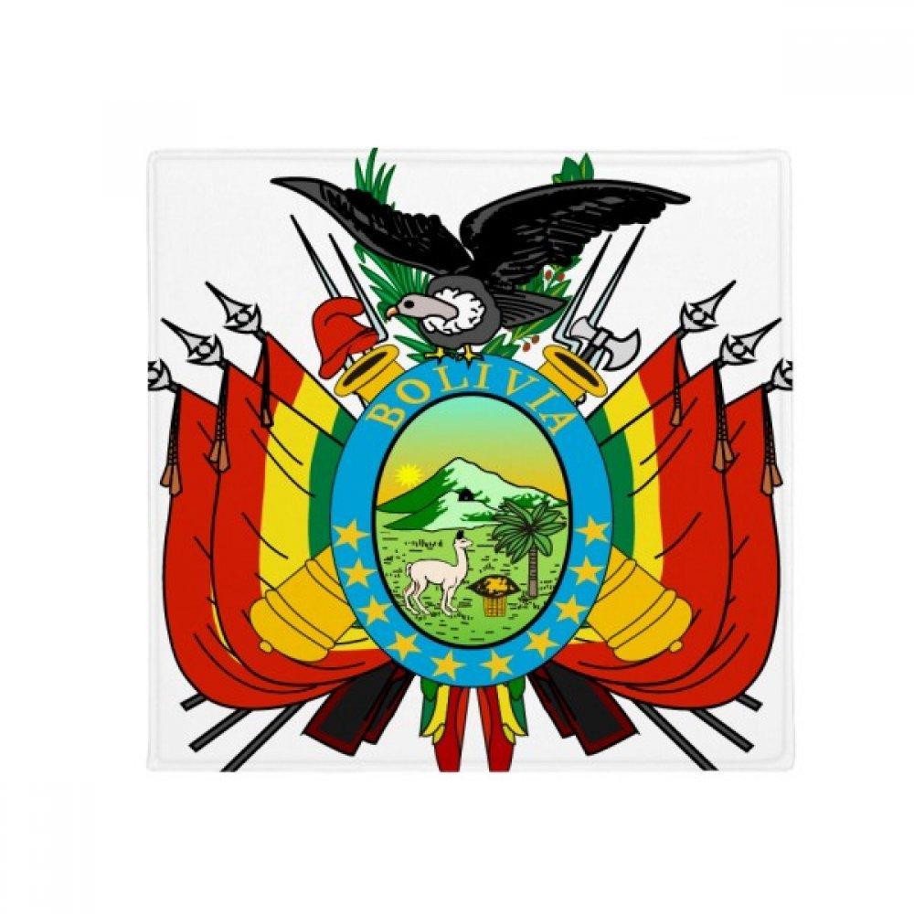 DIYthinker Bolivia National Emblem Country Anti-Slip Floor Pet Mat Square Home Kitchen Door 80Cm Gift