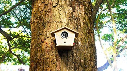 Brinno MAC200DN Portable Motion Activated Wireless Outdoor Security Camera (Black) by Brinno (Image #9)