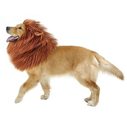 Amazon.com   GABOSS Lion Mane Costume a280ff39f