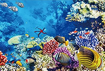 Seabed Photography Background 10x6.5ft Blocks Undersea Photo Backdrops Underwater Colofrul Coral and Fish Deep Blue Water World Photo Shooting Background Studio Props
