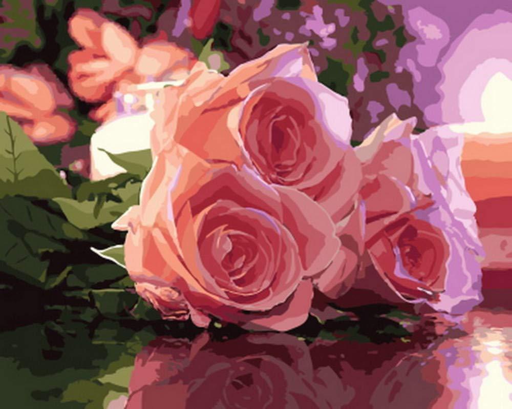 Csyhl Pintura al óleo sin Marco por números Pintura por número para la decoración del hogar Pintura al óleo Pintura Rosa Rosa