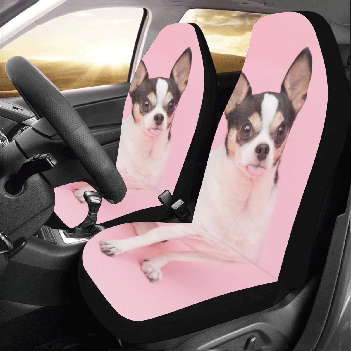 Amazon.com: Cute Chihuahua Dog Animal Custom