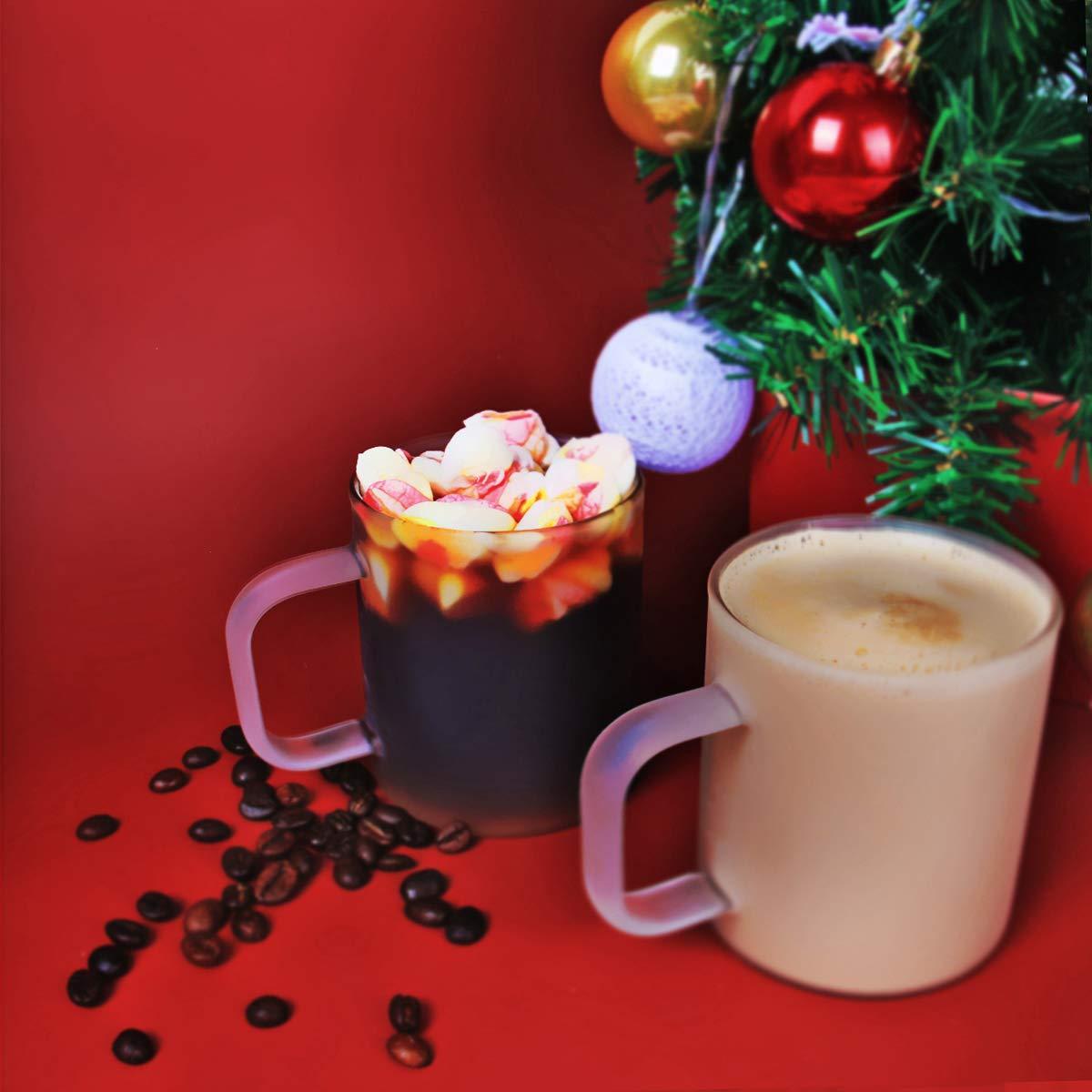 MIOCARO Glass Espresso Mug Coffee Cup Matt Tea Cup With Handle - 12 oz, Set of 2