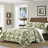 Tommy Bahama Monte Verde Quilt, King, Medium Green