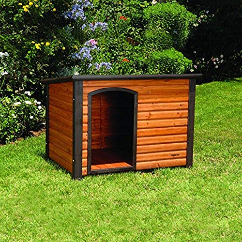 Dog house fit for a king