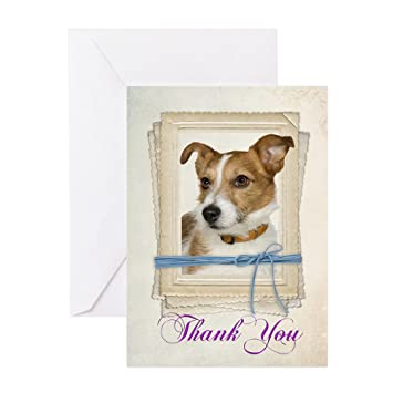 Amazon Cafepress Jack Russell Thank You Cards Greeting