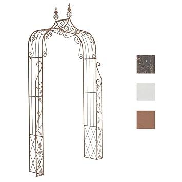 Clp Arche à Rosiers Métallique Aurora Arceau De Jardin En Fer