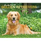 For the Love of Golden Retrievers 2021 14 x 12 Inch Monthly Deluxe Wall Calendar with Foil Stamped Cover, Animal Dog Breeds