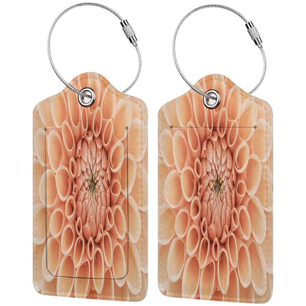Modern luggage tag Abstract Home Decor Collection Dahlia Petals Flowerhead Autumn Flower Blooming Botanical Parks Nature Image Print Suitable for children and adults Light Salmon W2.7 x L4.6