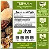 Triphala Capsules Extra Strength 500 mg - Immunity