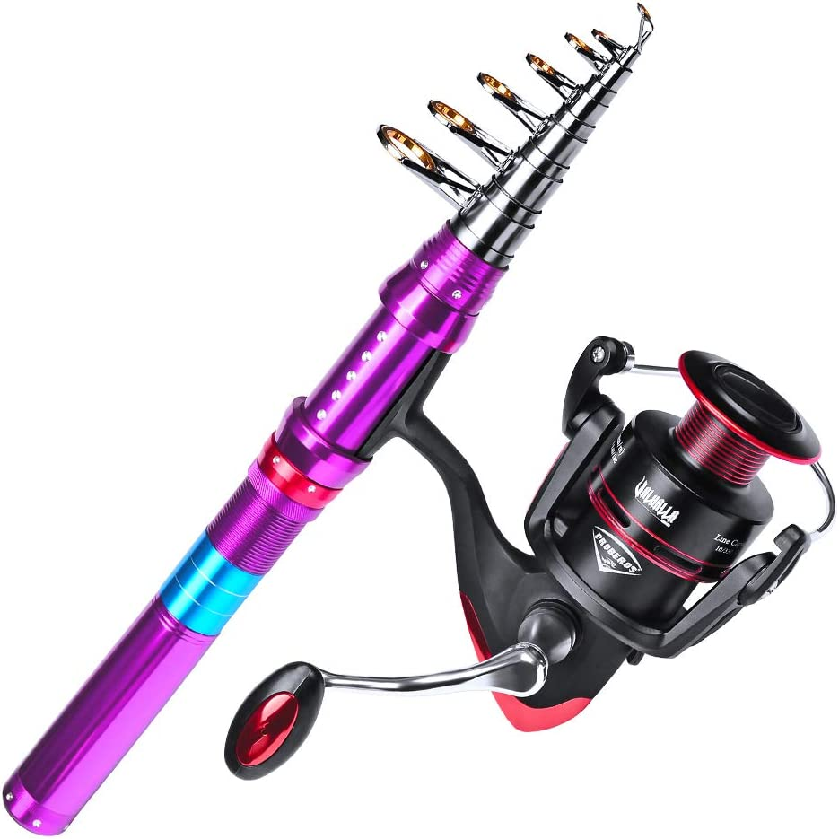 Telescopic Carbon Fiber Spinning Fishing Rod and Reel Combo Full Kits Pole US