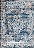 Andromeda XH-TQF2-JXYC S5419 Blue White Gray Area Rug Modern Distressed Oriental (2′ x 3′), 2′ x 3′ DOOR MAT Review