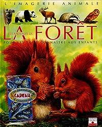 Les animaux de la forêt : Pour les faire connaître aux enfants (1Jeu)