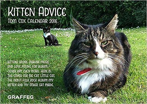 Kitten Advice 2016 Calendar by Tom Cox (2015-09-15)
