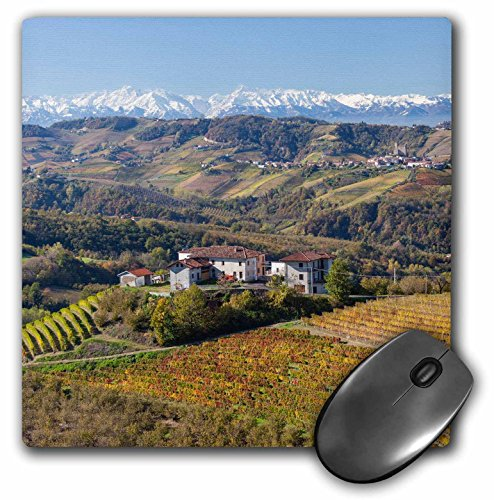 Vineyards Rose - 3D Rose Vineyards Alba Langhe Piedmont Italy Matte Finish Mouse Pad - 8 x 8 - mp_227676_1