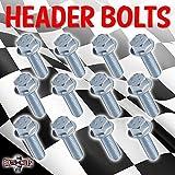 12 PACK LS1 HEADER BOLTS GRADE 10.9 LSX LS2 LS3 LS6 LS7 GM VORTEC 4.8 5.3 6.0 6.2L