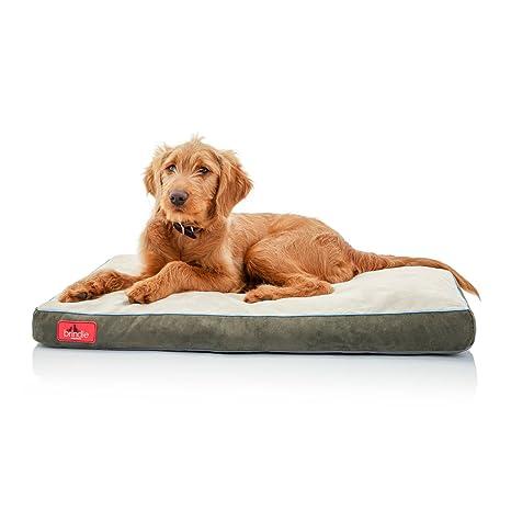 Brindle Cama de Perro de Espuma de Memoria Suave con Cubierta Desprendible Lavable Khaki 28in x