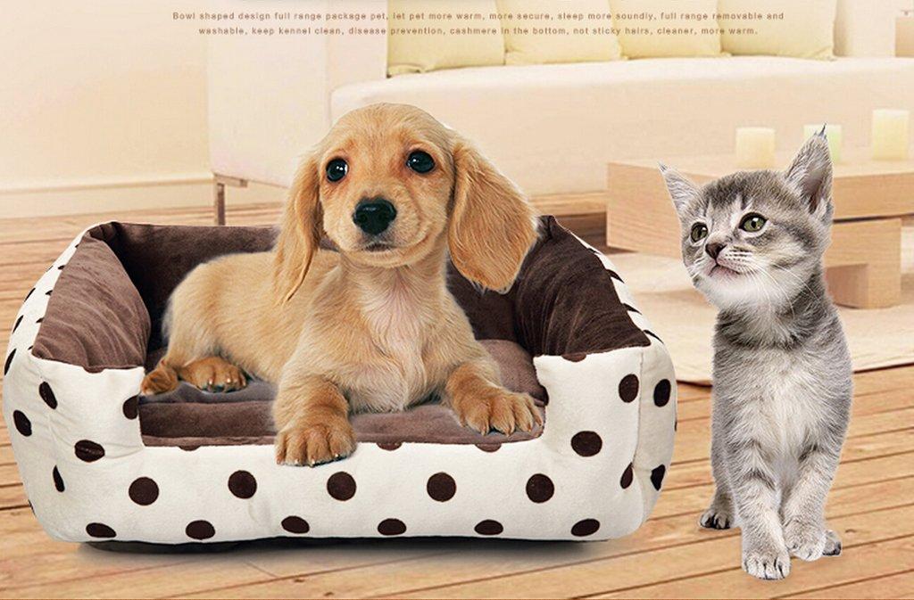 Special oso perro Chihuahua Caseta Aserrín para gatos mascota suministros Aserrín para Schnauzer/Yorkshire de Barcelona la mascota//Beijing £ š adecuado ...