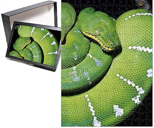 Photo Jigsaw Puzzle of KEL-1549 Emerald Tree BOA
