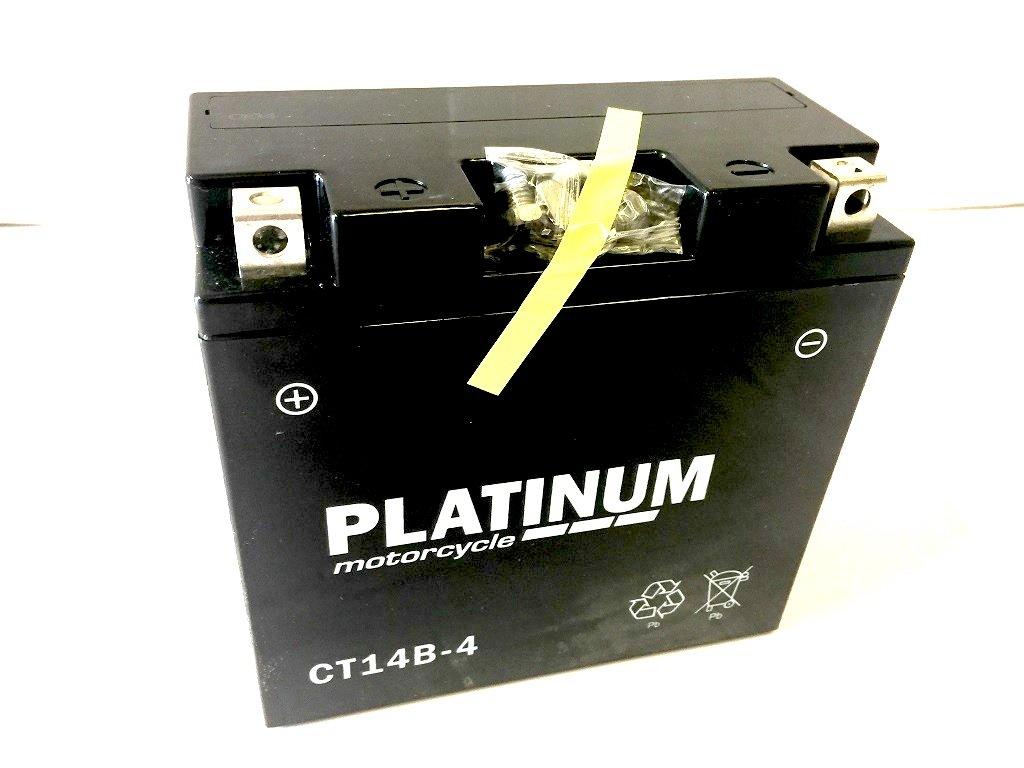 CT14B-4 (YT14B-4 YT14B4) Motorcycle Battery -12V 12AH 210A - 1 Year Warranty Platinum
