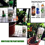 Vacation Plant Waterer, Ceramic Self Watering
