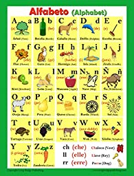 Spanish Language School Poster - Alphabet - Wall Chart for Home and Classroom - Spanish-english Bilingual Text (18x24 inches)