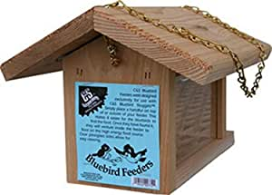 C&S Products Company 428179, Bluebird Feeder 1