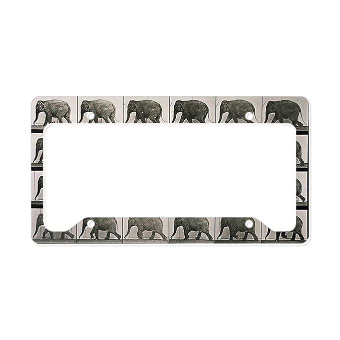 I LOVE ELEPHANTS Black Metal Heavy Duty License Plate Frame Tag Border