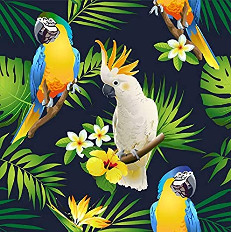 7x7FT Vinyl Backdrop Photographer,Animal,Colorful Forest Birds Background for Baby Birthday Party Wedding Graduation Home Decoration