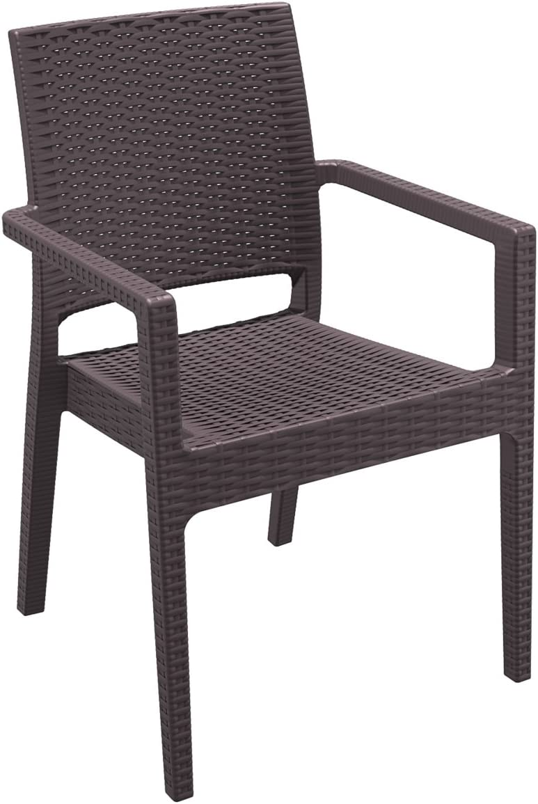 Compamia Ibiza Resin Dining Arm Chair Set of 2 Finish Brown