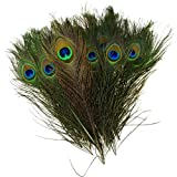 "Pack of 30pcs High Quality Real Natural Peacock Feathers (10""-12"") with Kare and Kind® Retail Packaging"