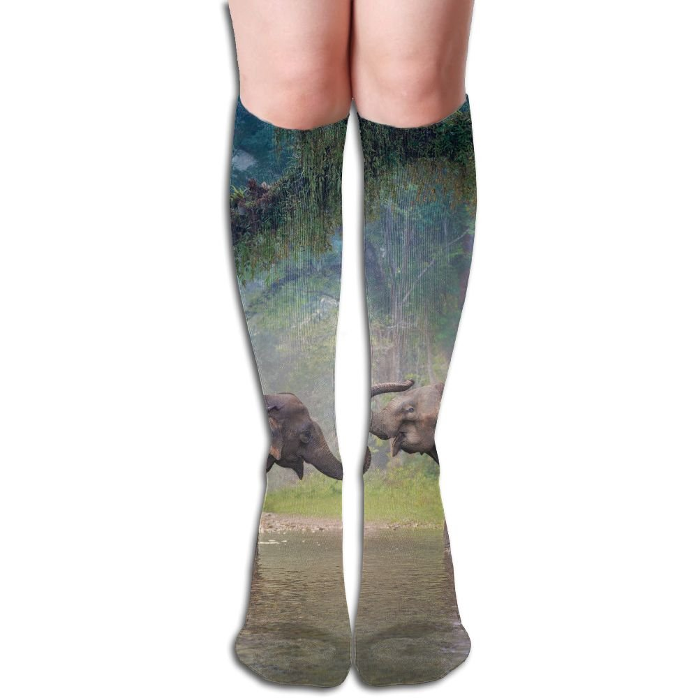 FYW Asian Elephant In A Natural River At Deep Forest Thailand Mens & Womens Knee High Socks For Running Edema Diabetic