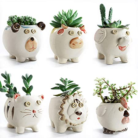 6 Piece Quirky Planters
