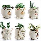SUN-E 3.7 Inch Cute Animals Cartoon Farmhouse Style Ceramic Succulent Plant Pot Cactus Plant Pot Flower Pot Container…