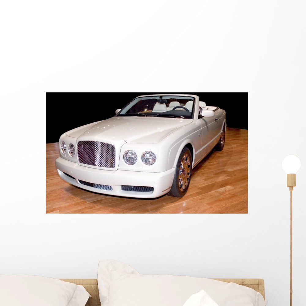 Wallmonkeys Luxury Convertible Wall Mural Peel and Stick Graphic (24 in W x 16 in H) WM310516