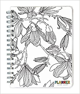 2017 academic year color me spiral engagement planner