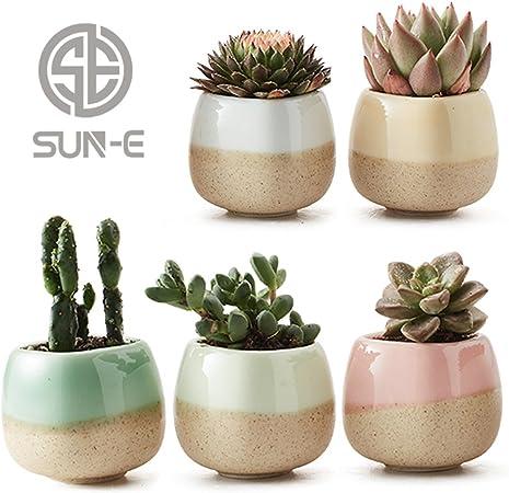 Amazon Com Sun E 5 In Set 2 2 Inch Container Planter Ceramic