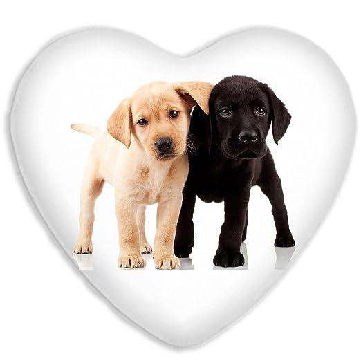 Labrador cachorros lindo perro de seda sintética cojín de ...