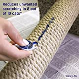 Feliscratch by Feliway Cat Scratch Attractant for