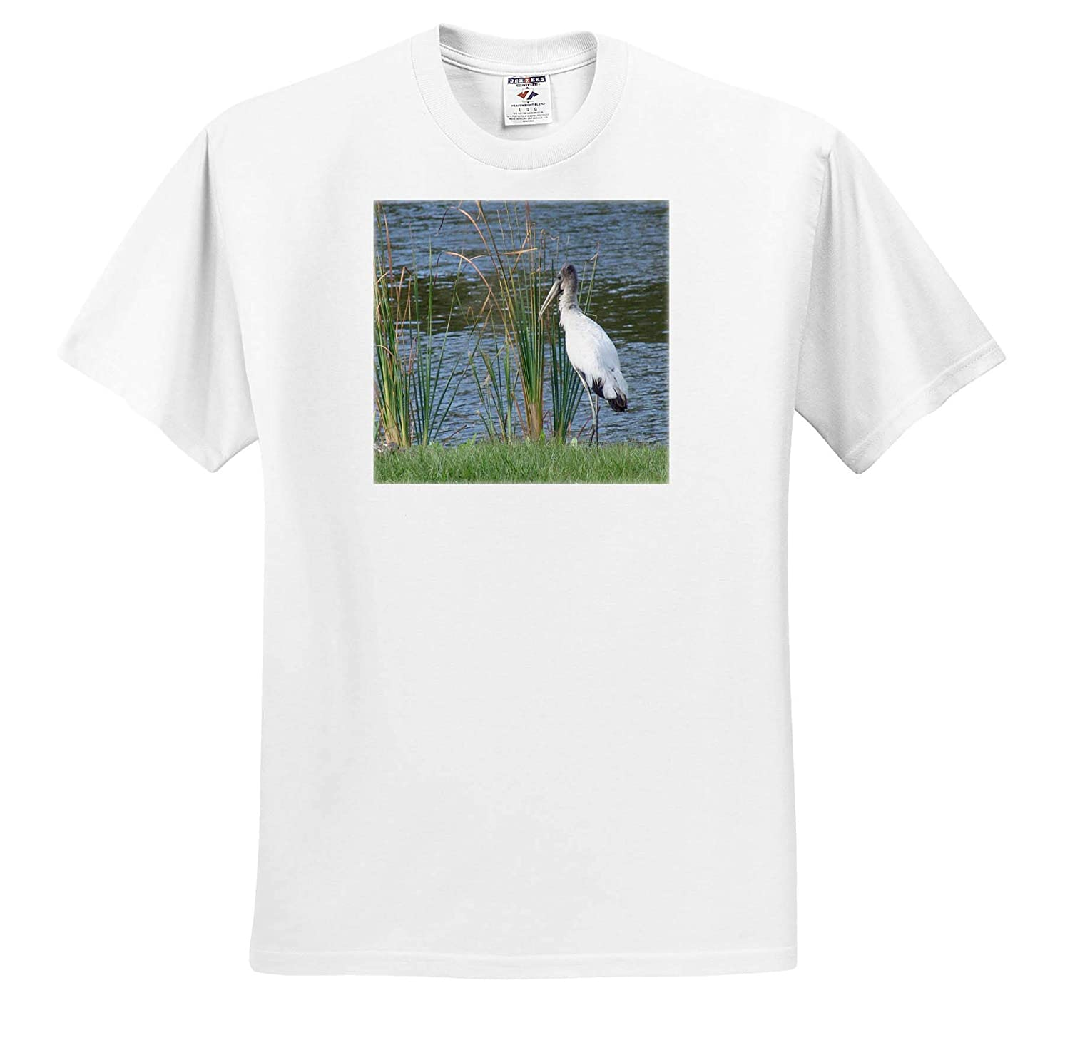 Image of Florida Wood Stork in The Reeds Adult T-Shirt XL ts/_318962 Beautiful Birds 3dRose Lens Art by Florene