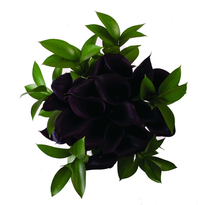 Dark Elegance Mini Calla Bouquet - 4 Pack by Bloomingmore