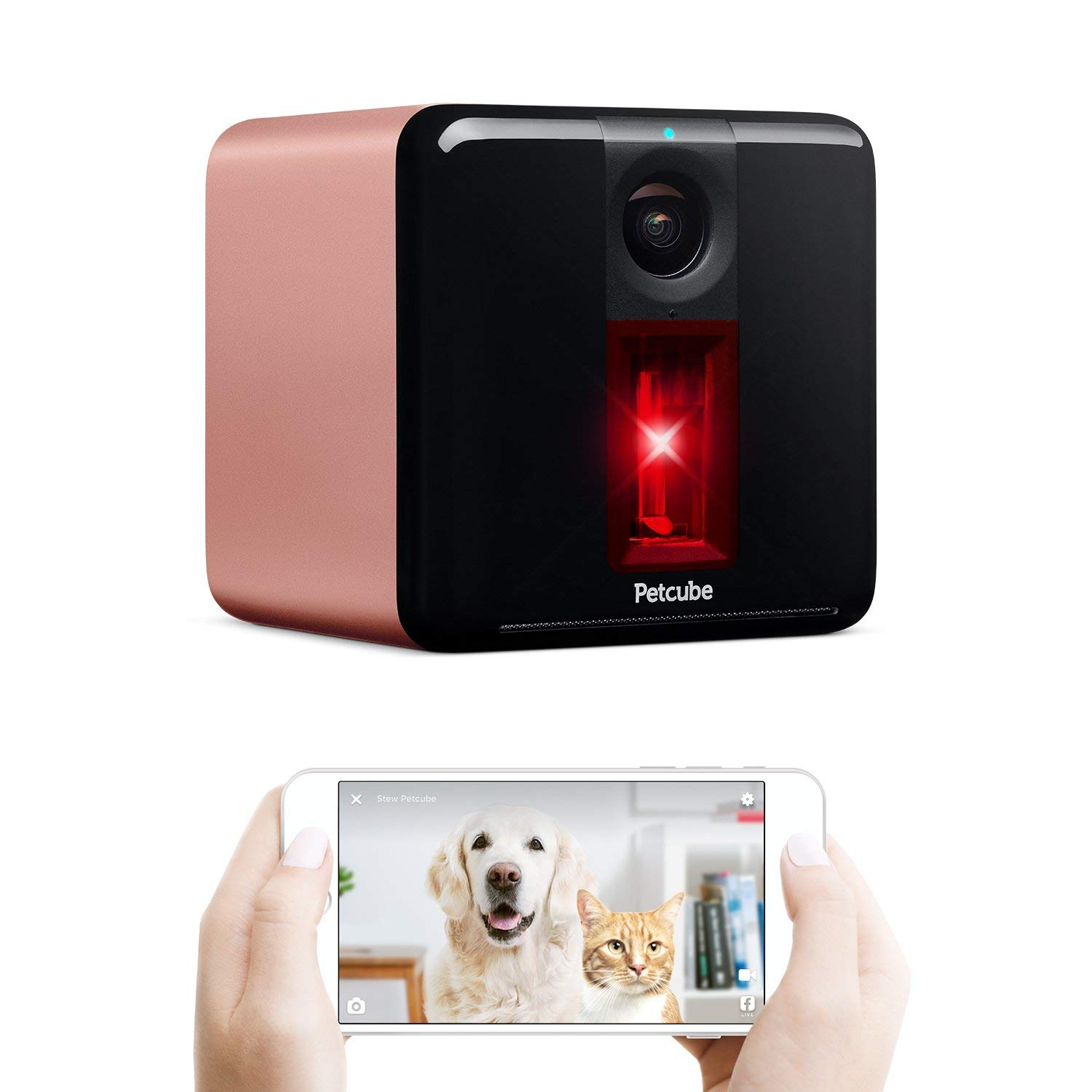 Petcube Play Pet Camera with Interactive Laser Toy. Monitor Your Pet Remotely with HD 1080p Video, Two-Way Audio, Night Vision, Sound and Motion Alerts. Compatible with Alexa (Renewed)