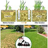 caiyuangg Lawn Aerator Spike Shoes, 4 Universal