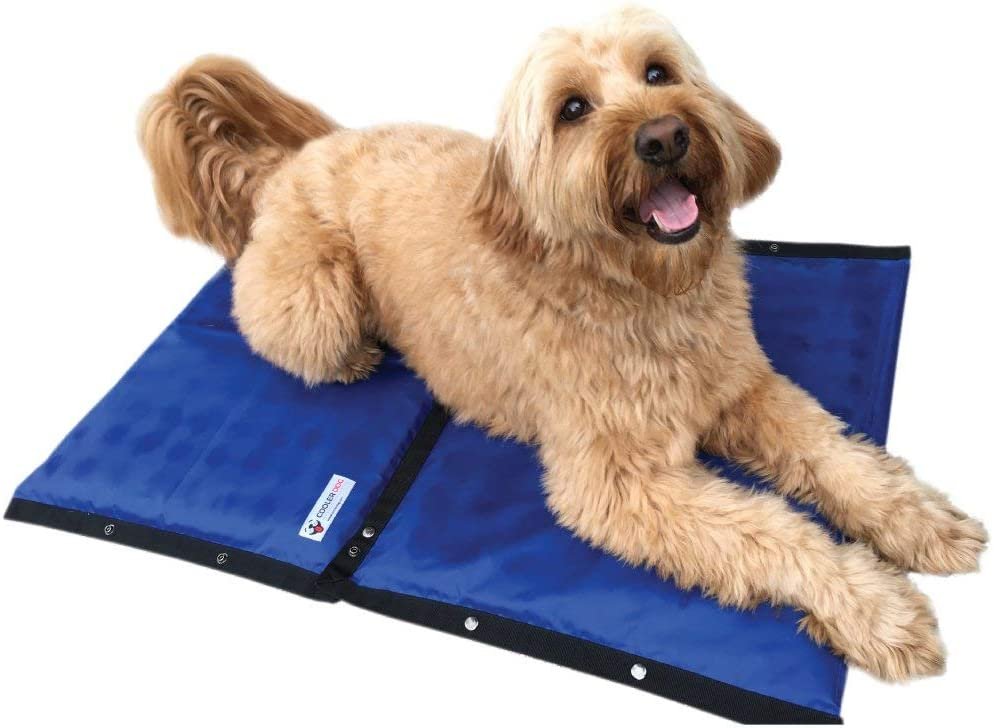 "CoolerDog Dog Cooling Pad Dog Cooling Products Hydro Cooling Mat (23""x18"")"