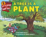 img - for A Tree Is a Plant (Let's-Read-and-Find-Out Science 1) book / textbook / text book