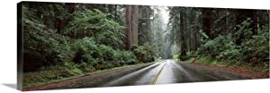 GREATBIGCANVAS Road Passing Through Forest Avenue of The Giants Humboldt Redwoods State Park Eureka Humboldt Co.