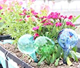 LeBeila Plant Watering Bulbs Globes 3 Small Automatic Self Watering Planter Stakes Glass Buld Balls For Indoor Outdoor Plants, Bonsai Potted Flowers, Garden Decorative Aqua Globs