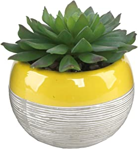 "Flora Bunda Artificial Succulent in Two Tone Lines Pattern Ceramic Pot,Yellow, 4"" W 5"" H 1 PC Echeveria Fake Plant, for Home Office Decor"